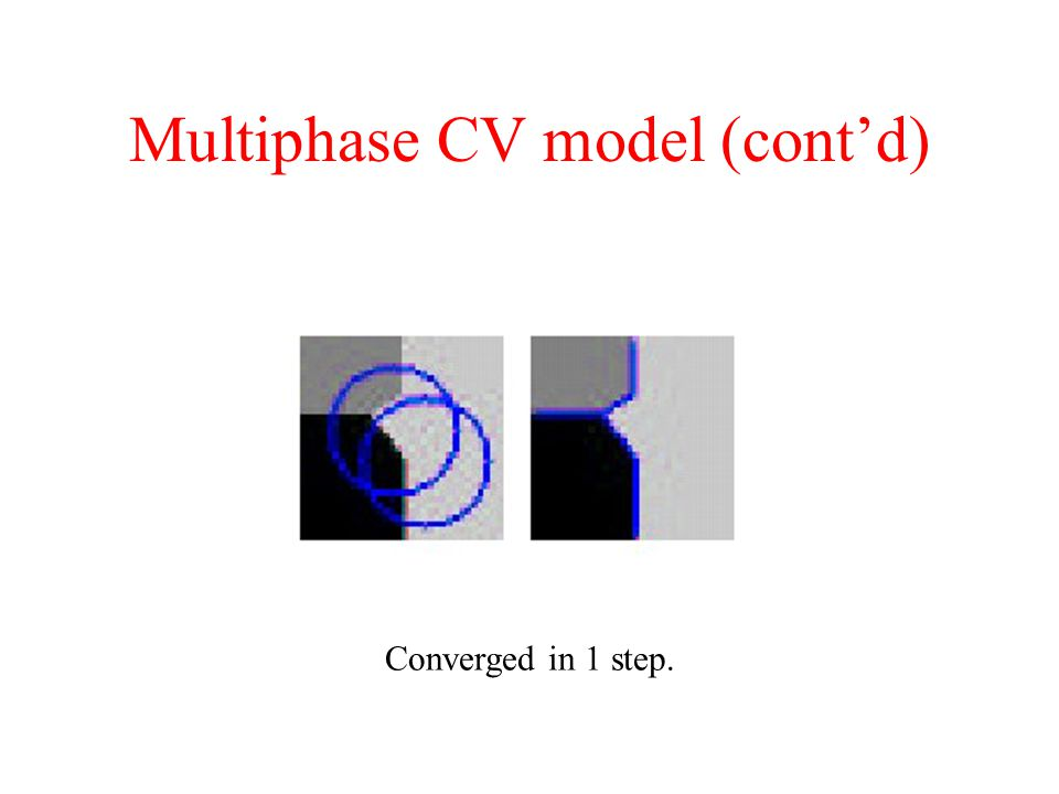 Multiphase CV model (cont'd)