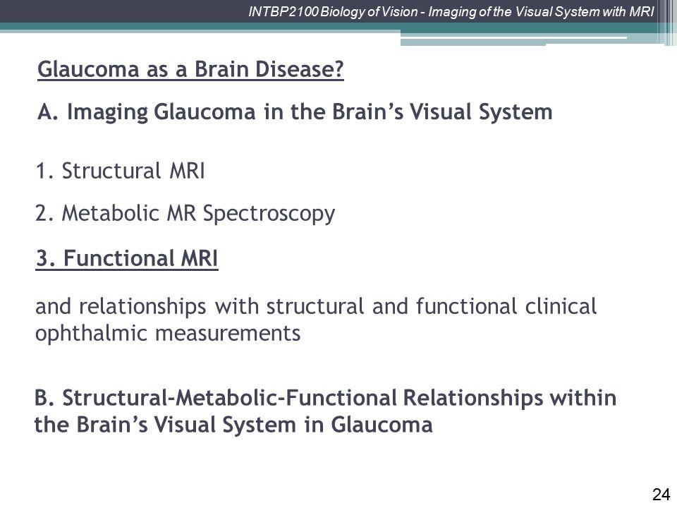 Glaucoma as a Brain Disease