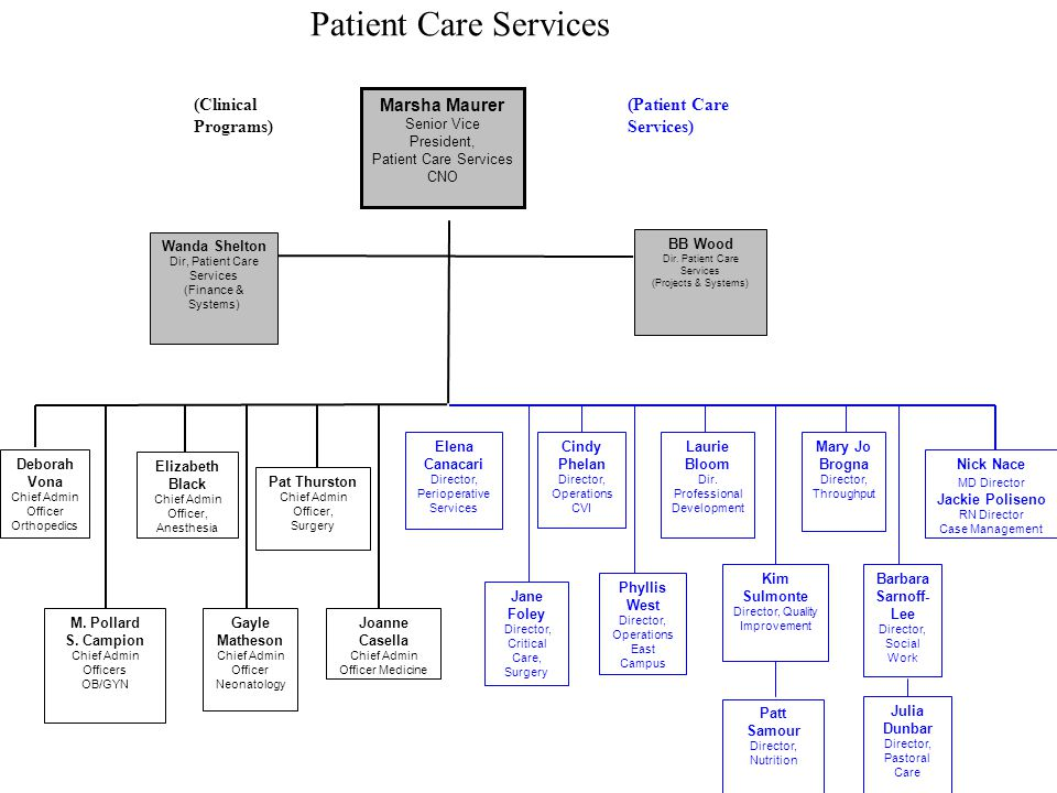 Patient Care Services (Clinical Programs) (Patient Care Services)