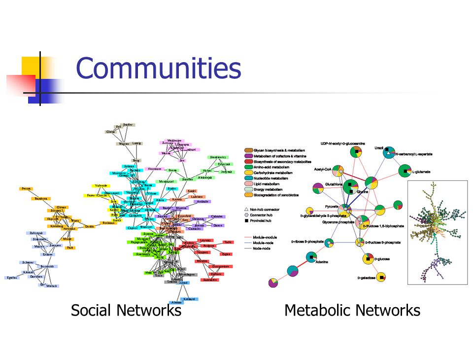 Communities Social Networks Metabolic Networks