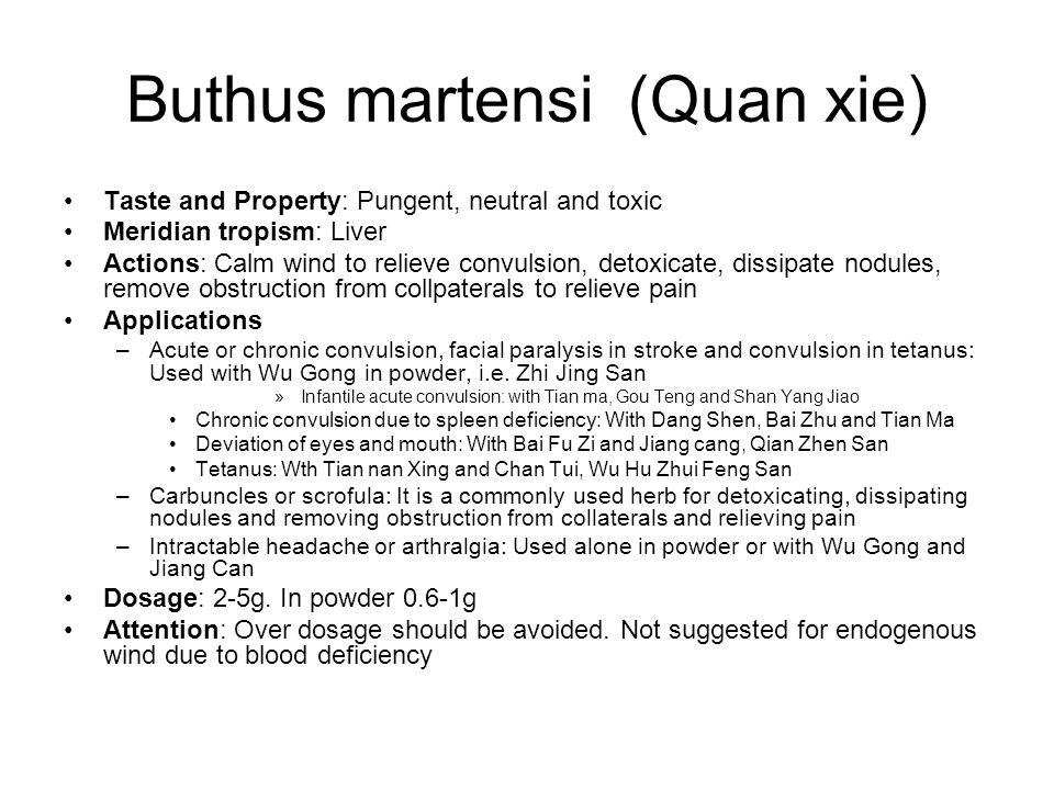 Buthus martensi (Quan xie)