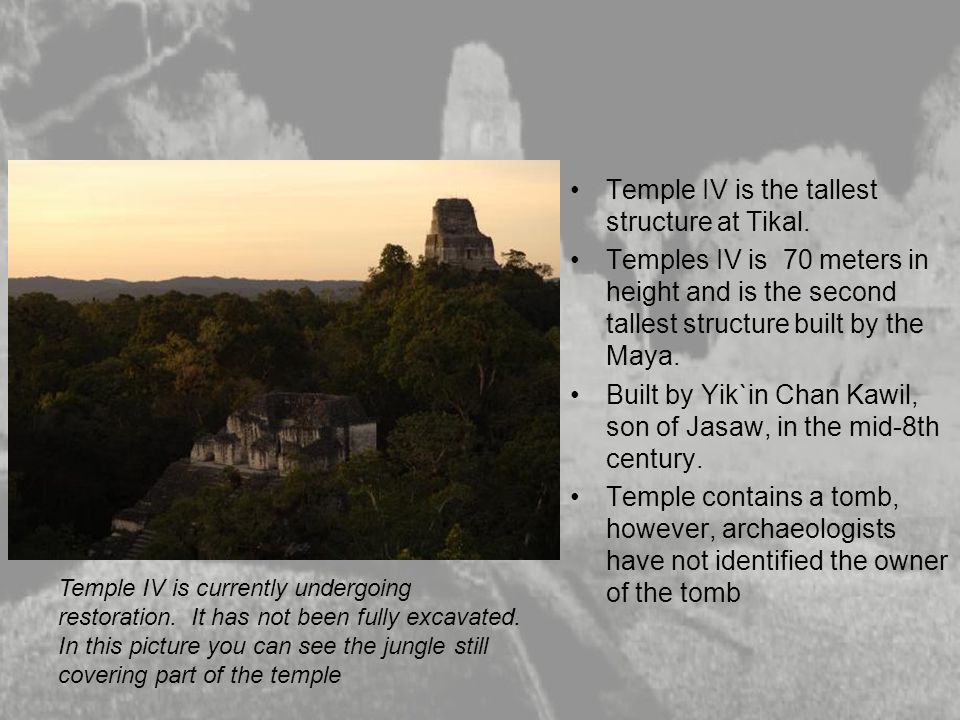 Temple IV is the tallest structure at Tikal.