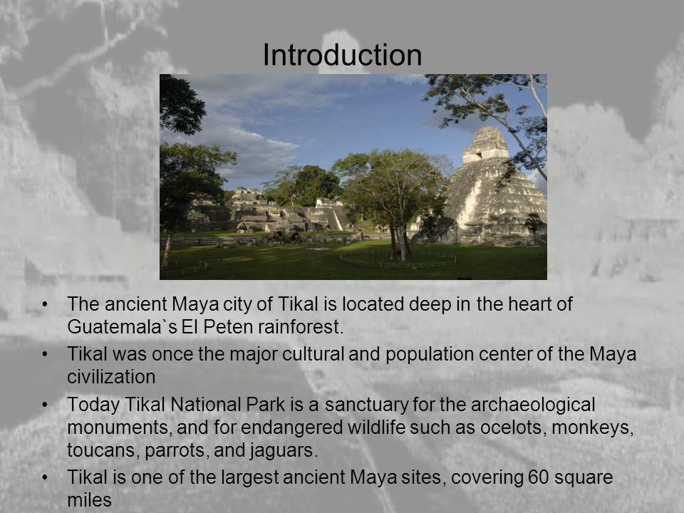 Introduction The ancient Maya city of Tikal is located deep in the heart of Guatemala`s El Peten rainforest.
