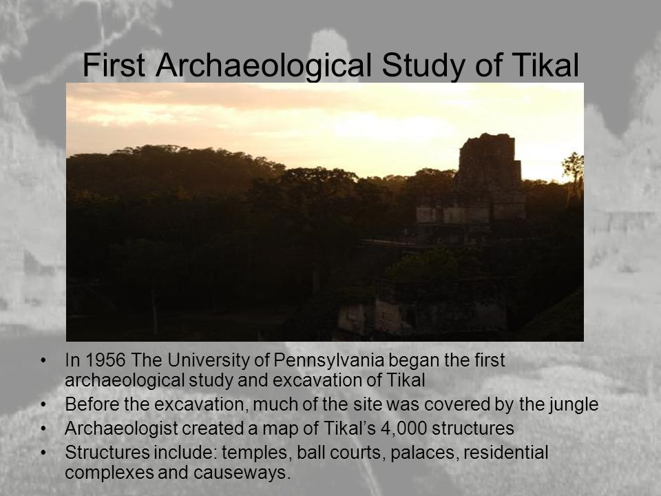 First Archaeological Study of Tikal