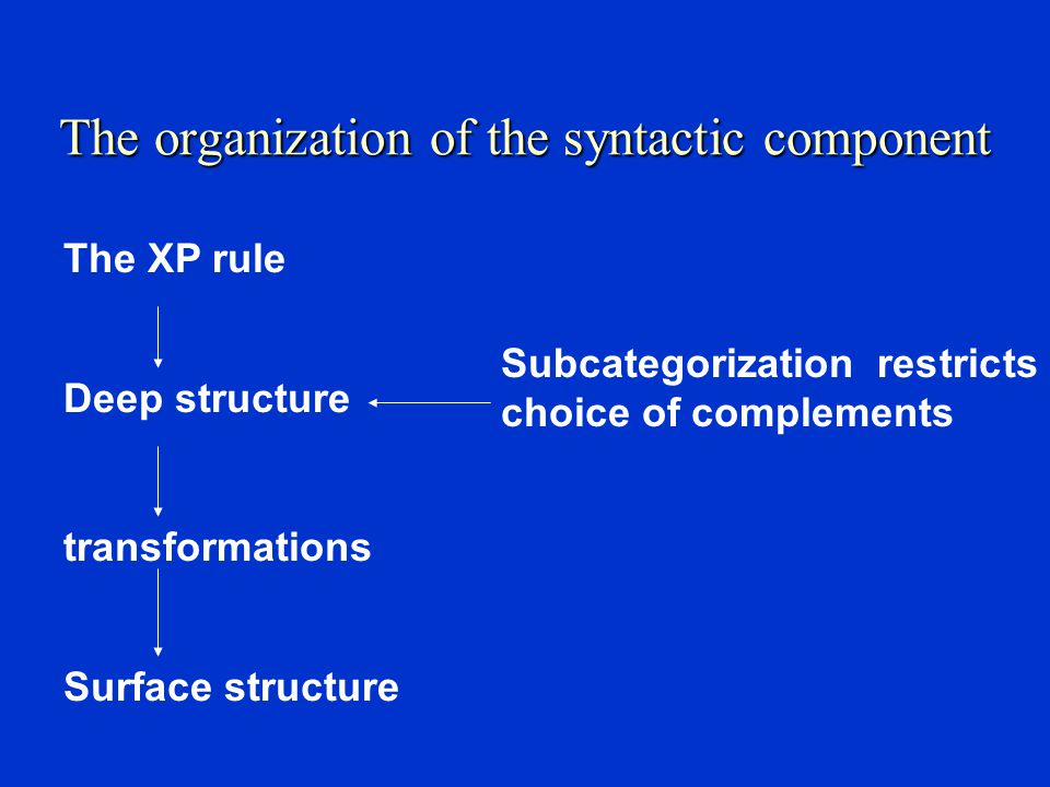 The organization of the syntactic component
