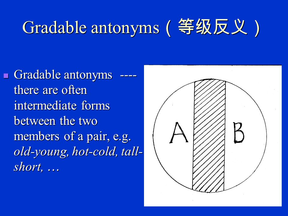 Gradable antonyms(等级反义)
