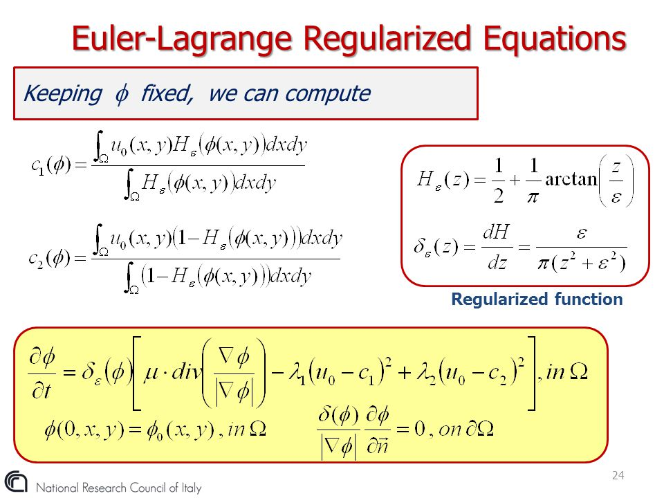 Euler-Lagrange Regularized Equations