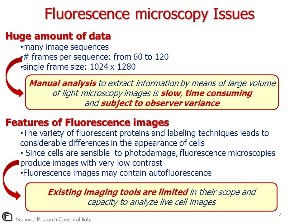 Fluorescence microscopy Issues