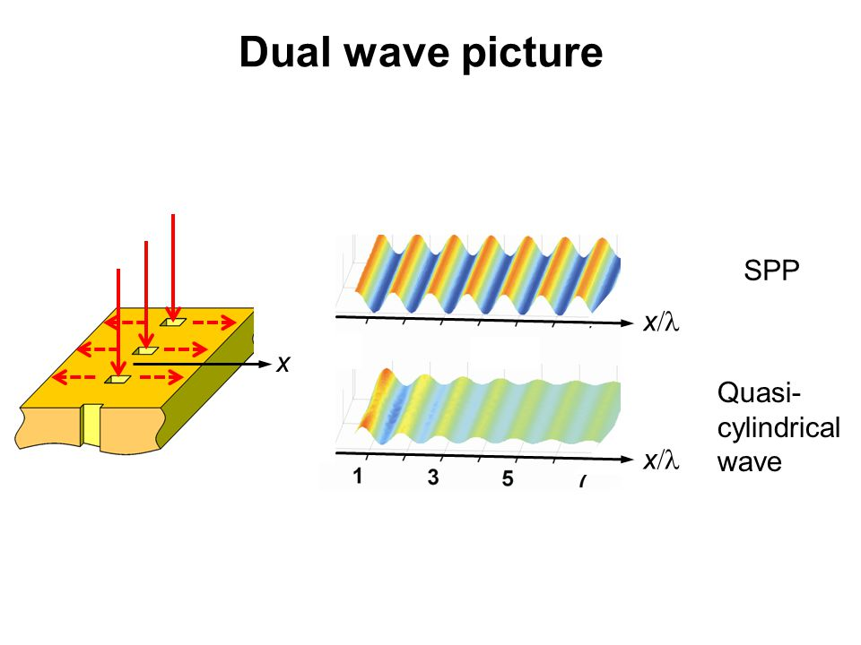 Dual wave picture SPP x/l x Quasi- cylindrical wave x/l