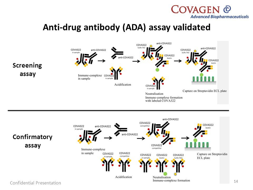 Anti-drug antibody (ADA) assay validated