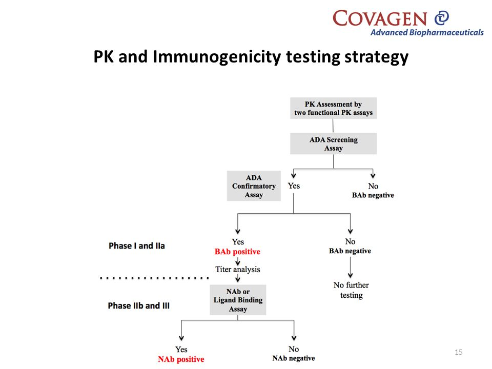 PK and Immunogenicity testing strategy