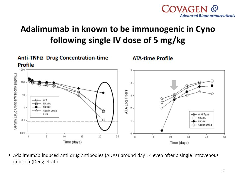 Adalimumab in known to be immunogenic in Cyno following single IV dose of 5 mg/kg