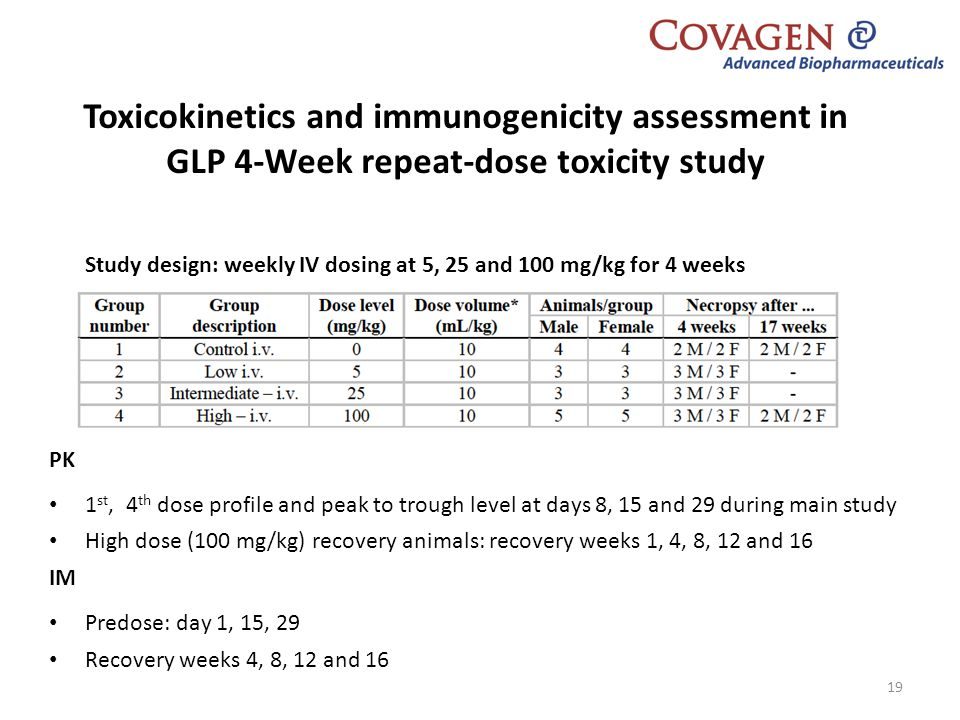 Toxicokinetics and immunogenicity assessment in GLP 4-Week repeat-dose toxicity study
