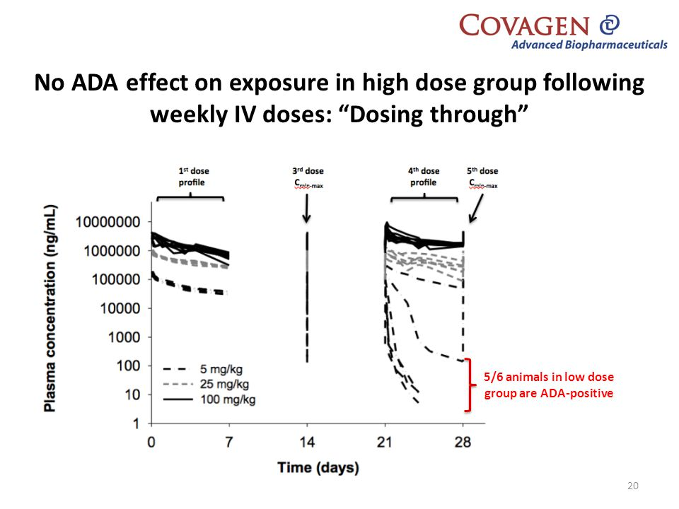 5/6 animals in low dose group are ADA-positive