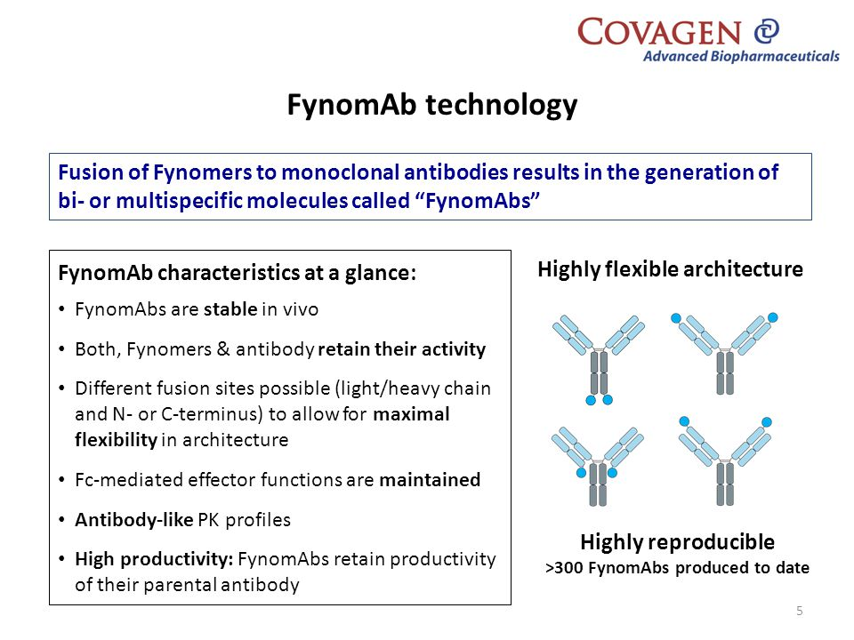 Highly reproducible >300 FynomAbs produced to date