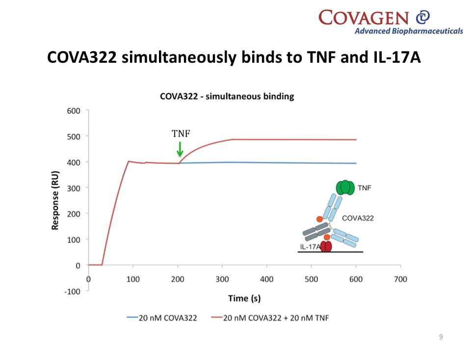 COVA322 simultaneously binds to TNF and IL-17A