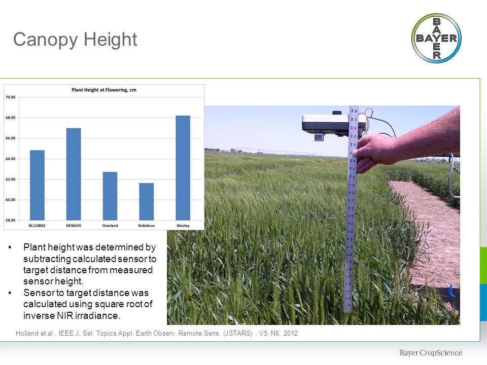 Canopy Height Plant height was determined by subtracting calculated sensor to target distance from measured sensor height.