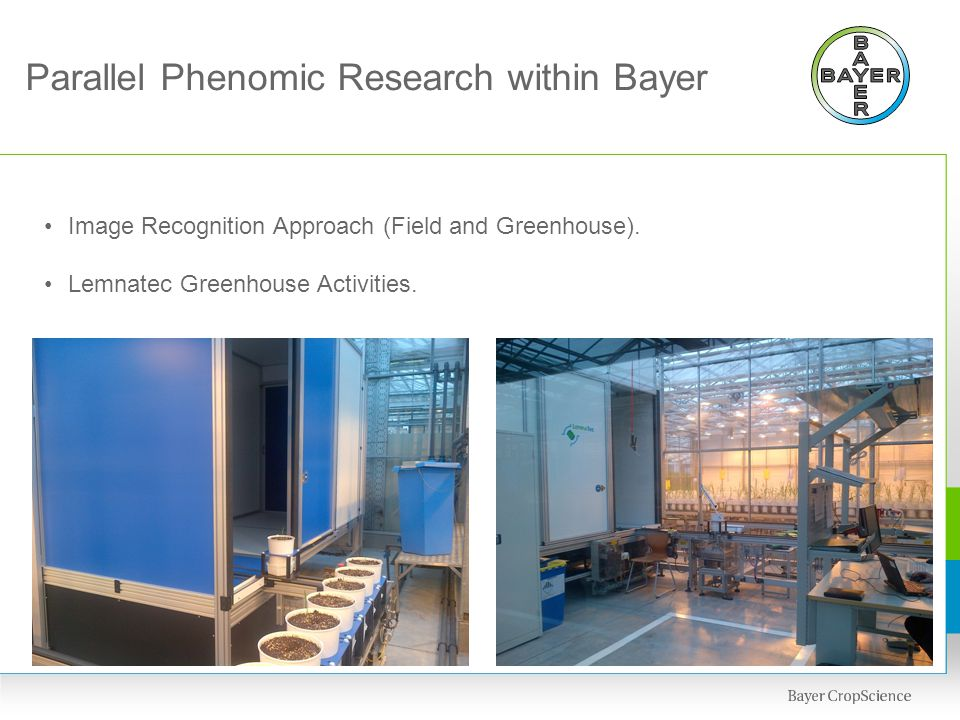 Parallel Phenomic Research within Bayer