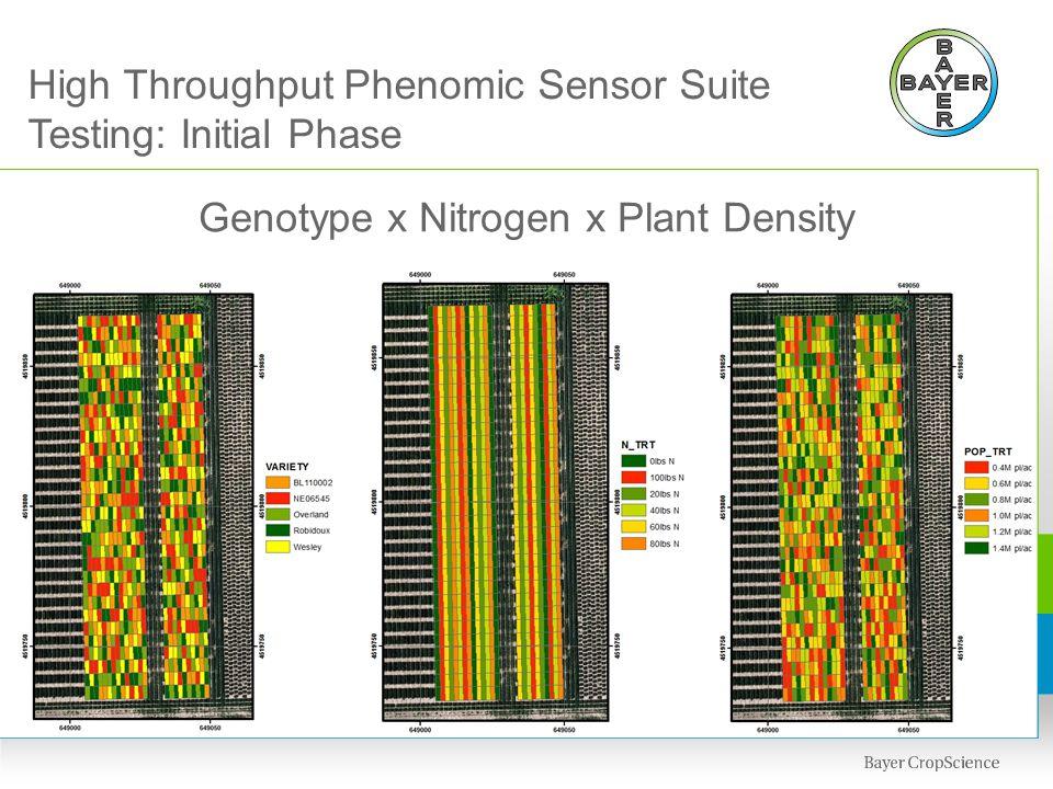 Genotype x Nitrogen x Plant Density