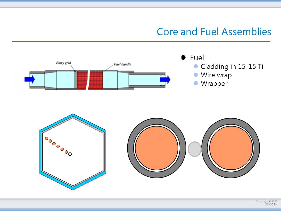 Core and Fuel Assemblies