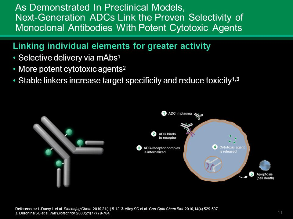 As Demonstrated In Preclinical Models, Next-Generation ADCs Link the Proven Selectivity of Monoclonal Antibodies With Potent Cytotoxic Agents