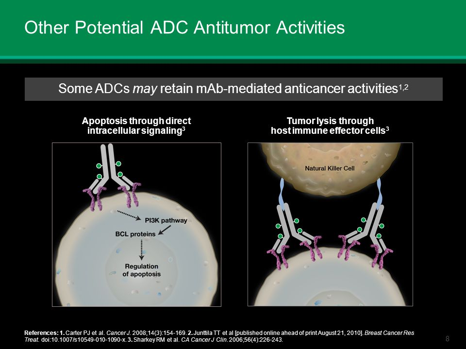 Other Potential ADC Antitumor Activities