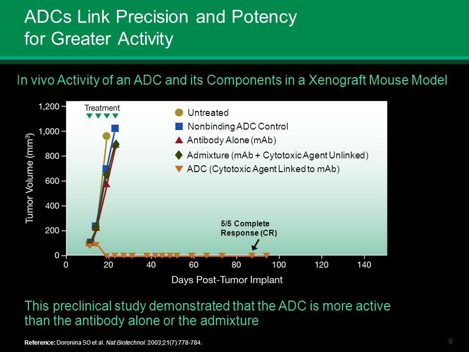 ADCs Link Precision and Potency for Greater Activity