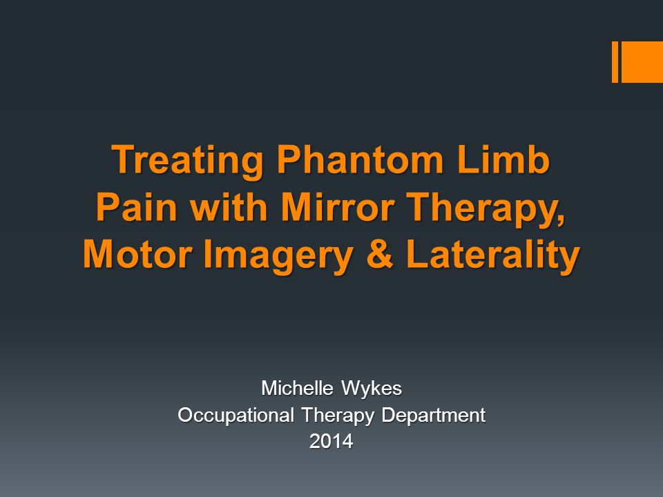 Michelle Wykes Occupational Therapy Department 2014