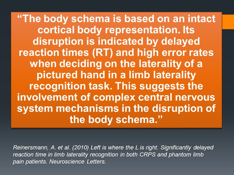 The body schema is based on an intact cortical body representation