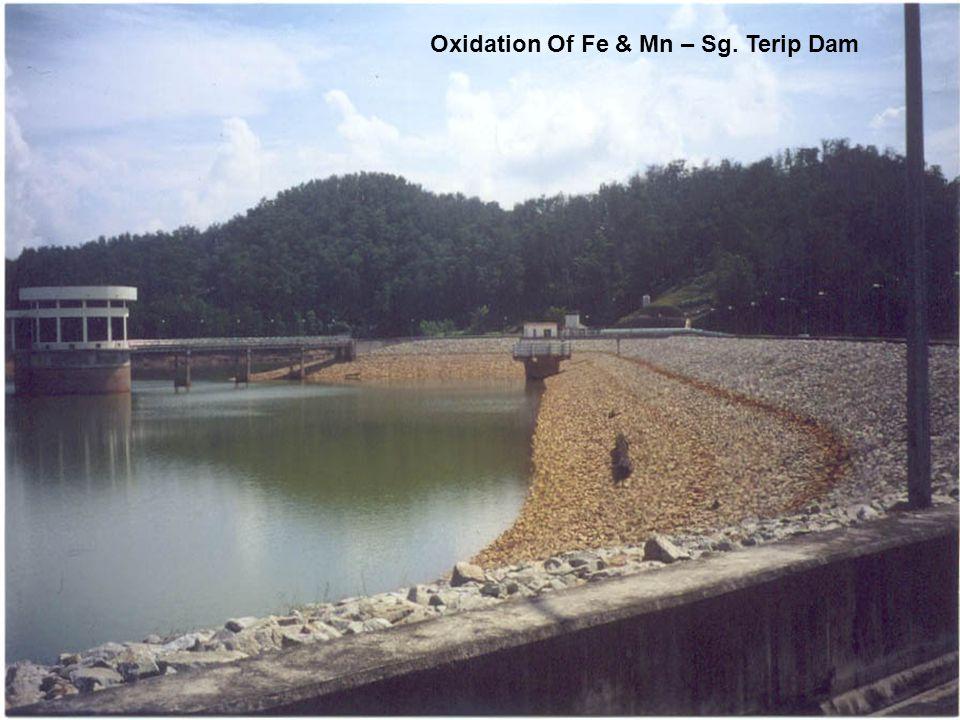 Oxidation Of Fe & Mn – Sg. Terip Dam