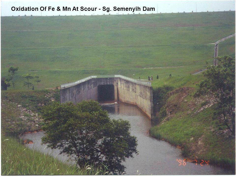 Oxidation Of Fe & Mn At Scour - Sg. Semenyih Dam