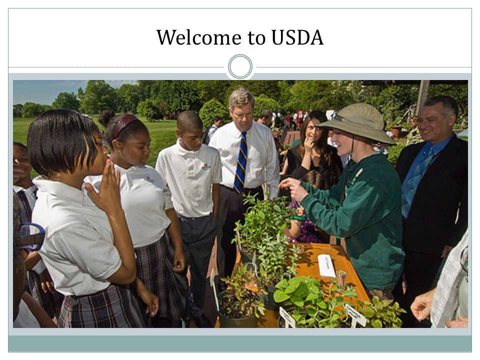 Welcome to USDA