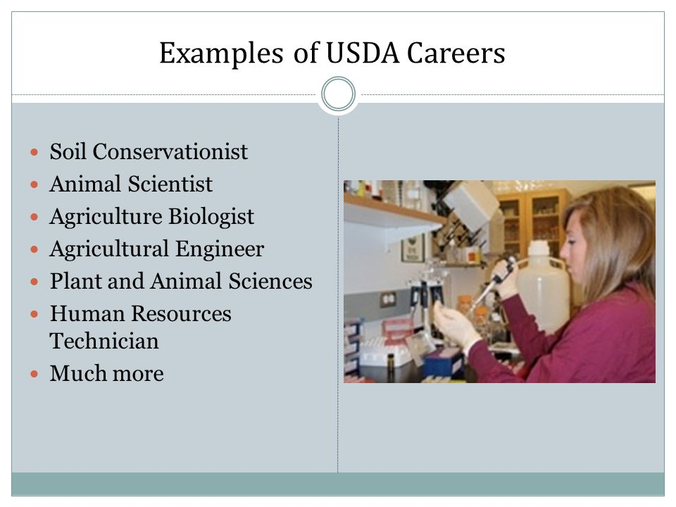 Examples of USDA Careers