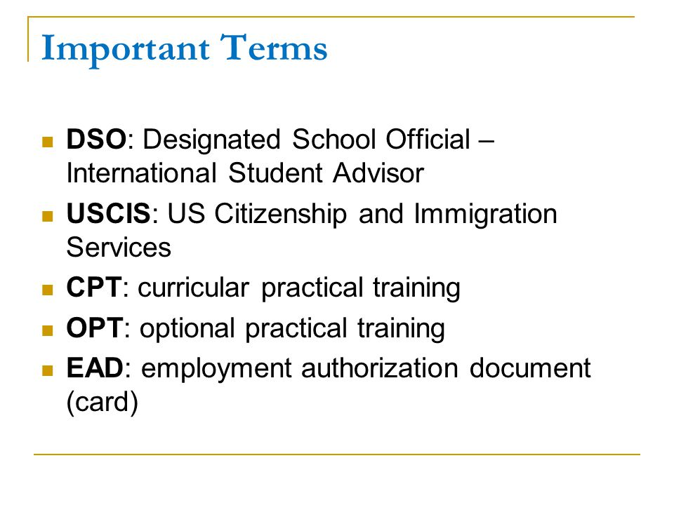 Important Terms DSO: Designated School Official – International Student Advisor. USCIS: US Citizenship and Immigration Services.