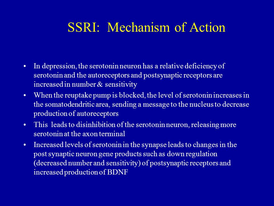 SSRI: Mechanism of Action