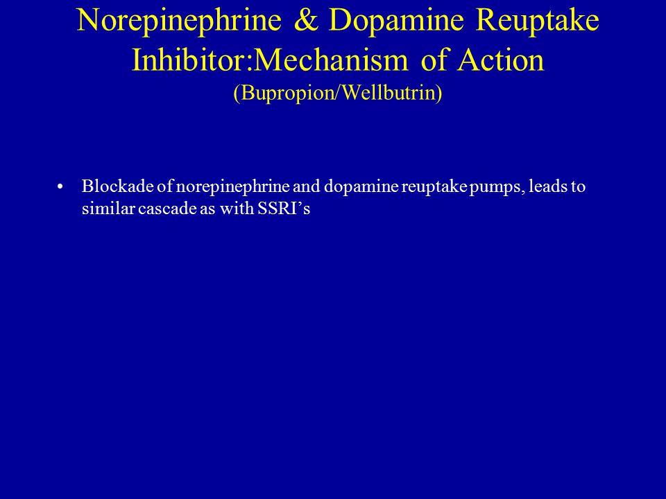 Norepinephrine & Dopamine Reuptake Inhibitor:Mechanism of Action (Bupropion/Wellbutrin)