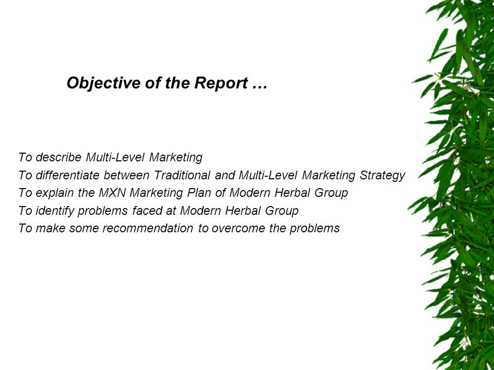 Objective of the Report …