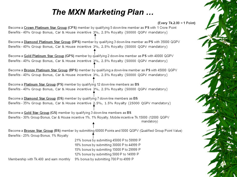 The MXN Marketing Plan …