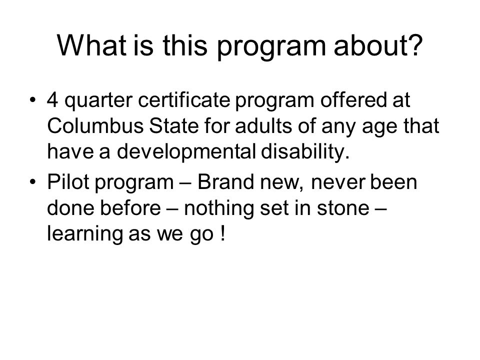 What is this program about