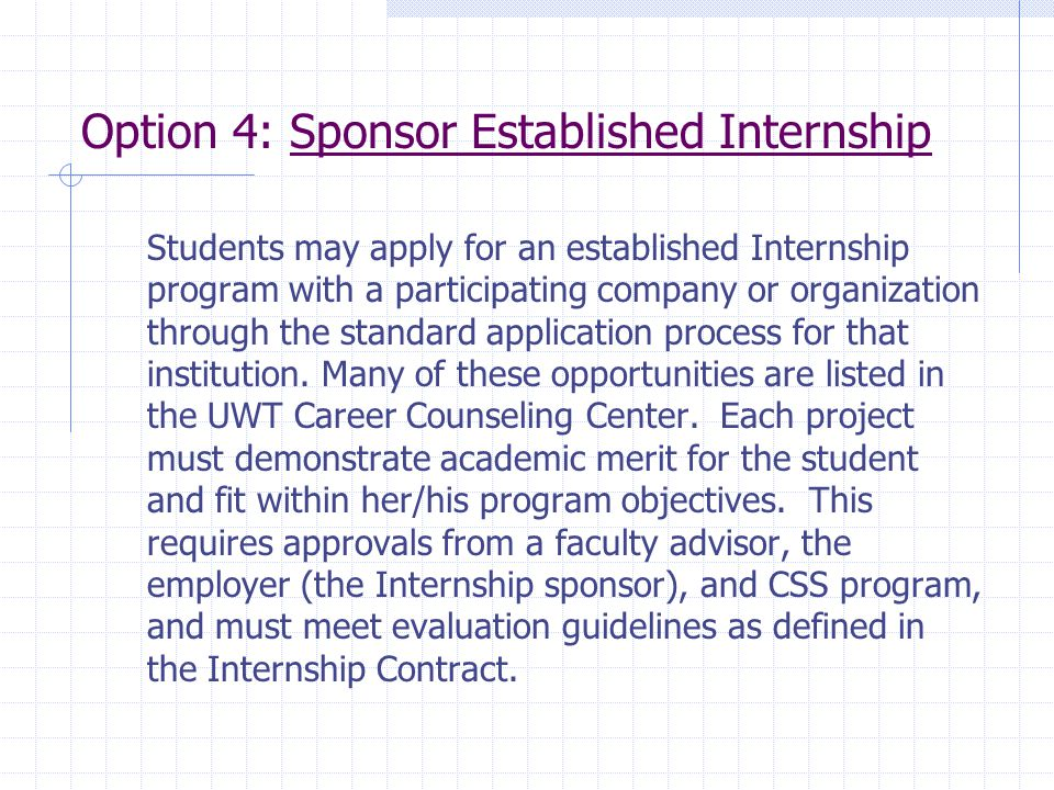Option 4: Sponsor Established Internship
