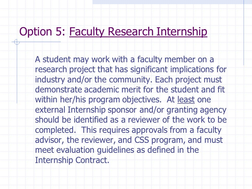 Option 5: Faculty Research Internship