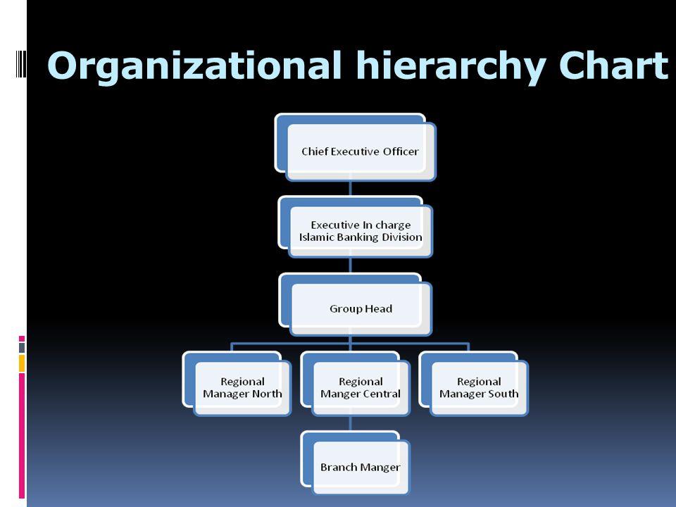 Organizational hierarchy Chart