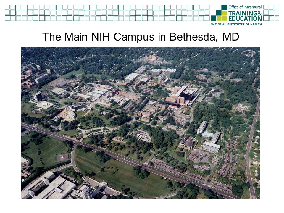 The Main NIH Campus in Bethesda, MD