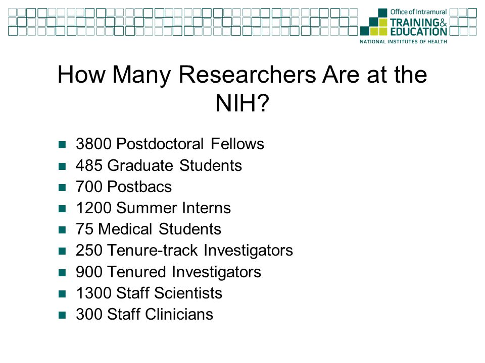 How Many Researchers Are at the NIH