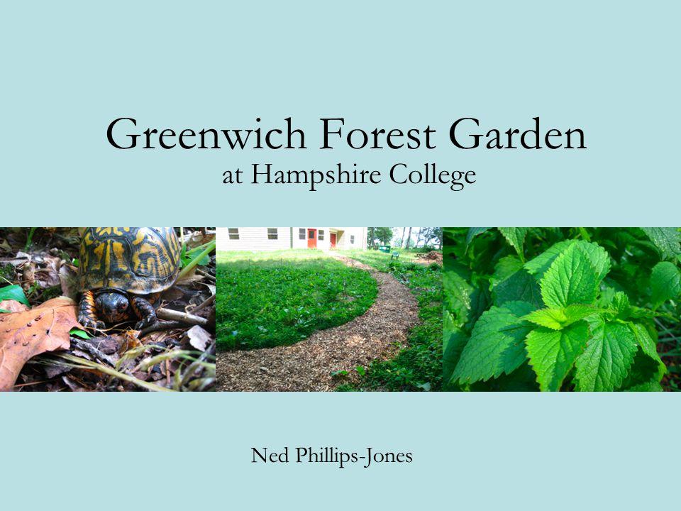 Greenwich Forest Garden