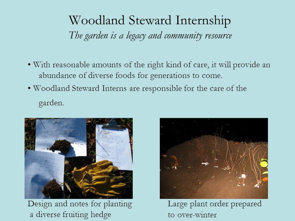 Woodland Steward Internship