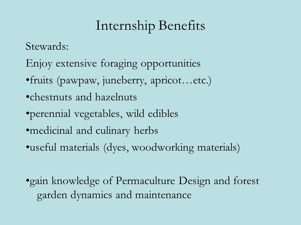 Internship Benefits Stewards: Enjoy extensive foraging opportunities