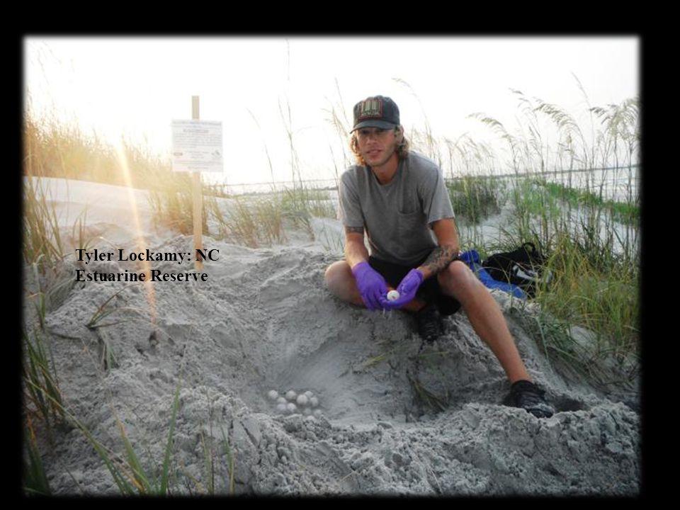 Tyler Lockamy: NC Estuarine Reserve