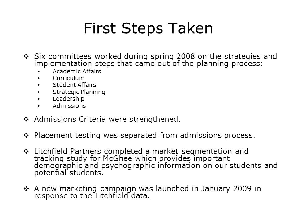 First Steps Taken Six committees worked during spring 2008 on the strategies and implementation steps that came out of the planning process: