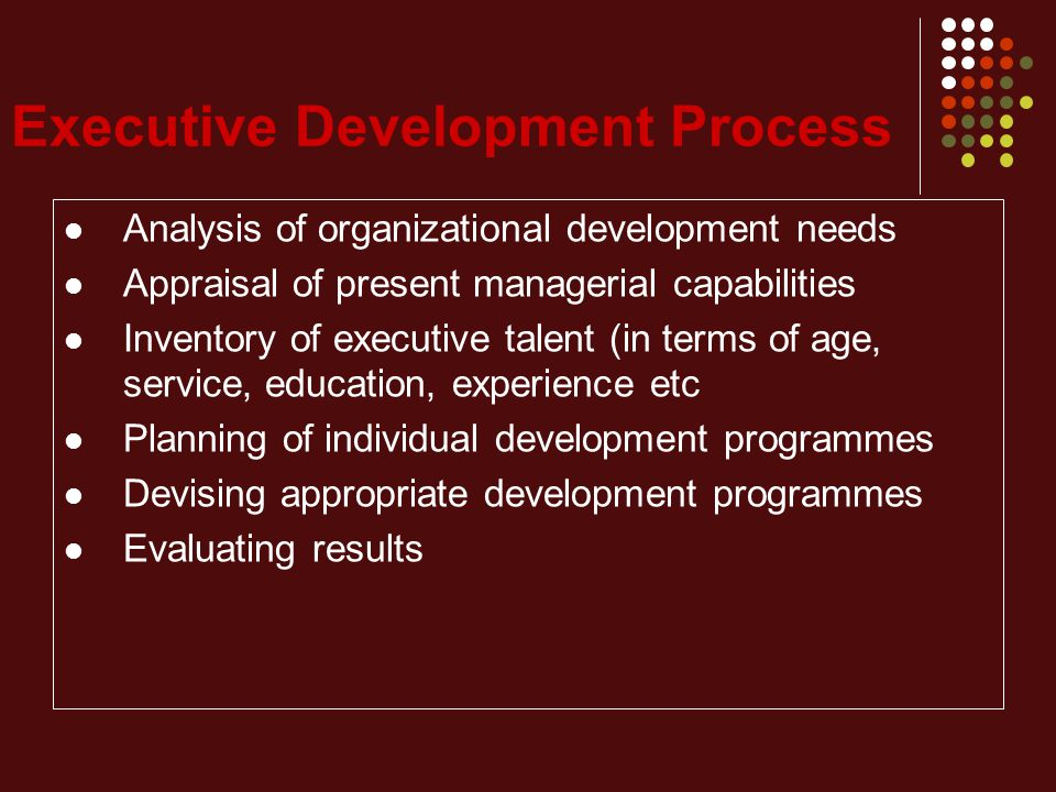 Executive Development Process